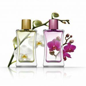عطر و ادکلن برند اصل (اورجینال)