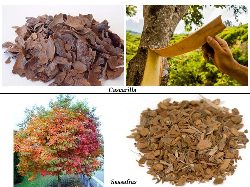 منابع ترکیبات عطر - پوسته