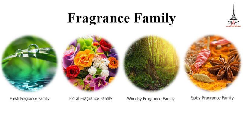 چرخه عطر و شناخت خانواده عطرها